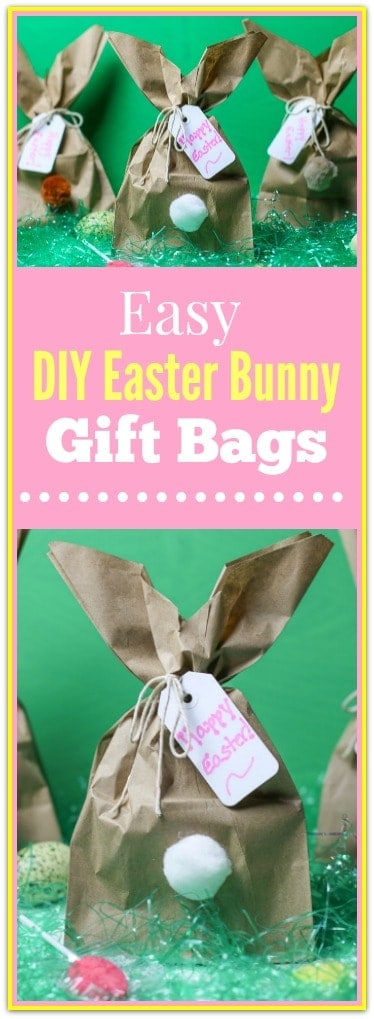 Easy diy easter bunny gift bagsg need a clever easy easter bunny craft idea how about making these fun easy negle Image collections