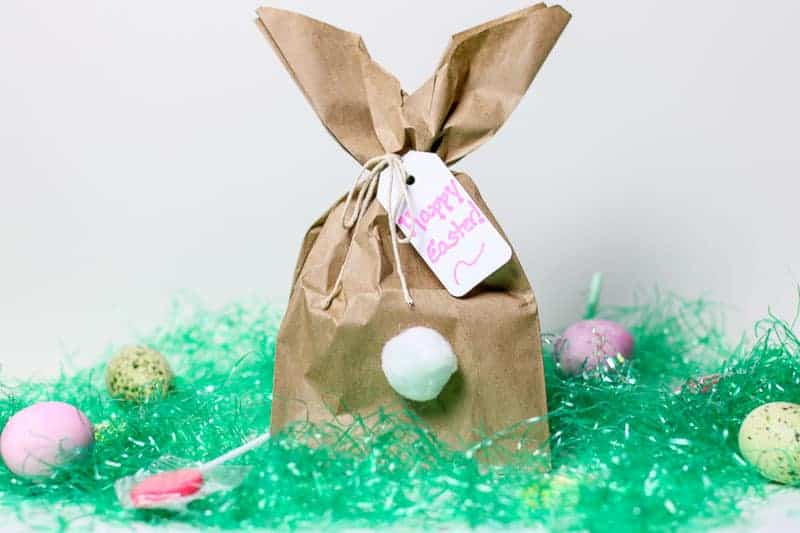 Easy diy easter bunny gift bags need a clever easy easter bunny craft idea how about making these fun easy negle Gallery