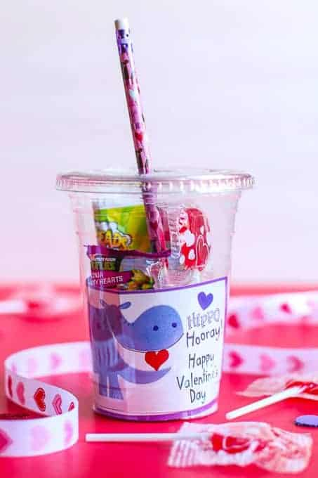 DIY Valentine's Day Gift for Students